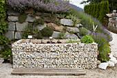 Hochbeet aus Gabionen vor einer Natursteinmauer am Hang
