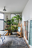 Houseplants in artist's studio with painted floor