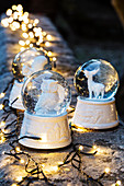 Snow globes with white animal figurines and fairy lights on top of wall