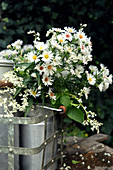 White bouquet made from autumn aster and knotweed