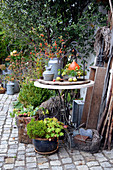 Autumn decoration in the courtyard with pumpkin, rose hips, hop vine, and chestnuts