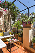 Small urban balcony with boxy iron furniture, Mediterranean potted plants and climbing plants on pergola