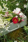 Strauß aus Maiglöckchen, Apfelblüten, roten Margeriten und Papageientulpe