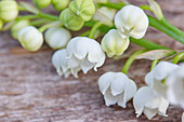 Lily-of-the-valley on wooden table