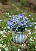 Blue bouquet of forget-me-nots and columbines