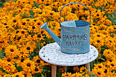 Side table and watering can in a bed with 'Marmalade' coneflower