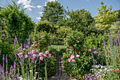 Cottage garden with peonies and currant stems