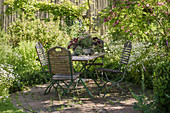 Table set on the shady terrace next to Rose acacia, Bristly locust