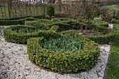 Knot garden in early spring
