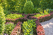 Knot garden with barberry hedge