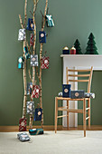 Gift bags hung from birch branches as Advent calendar against green wall