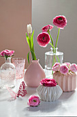 Pink and deep pink ranunculus and white tulip in various vases
