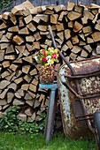 Colourful spring flowers and flower bulbs in glass vase in front of stacked firewood
