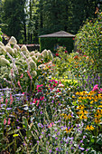 Country garden with coneflower and hydrangea