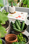 Fresh cucumbers in stoneware bowl on potting table