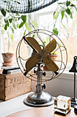 Old fan, wooden crate and climbing plant in front of window