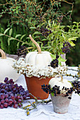 White pumpkins with a wreath of sea lavender and privet berries