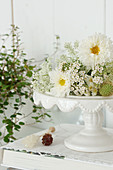 Cake plate with white flowers