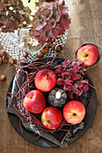 Herbstliche Tischdeko aus Äpfeln, Zweigen, Hortensienblüten und Kerze