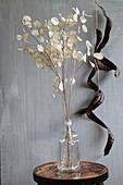 Bouquet of honesty in glass vase in front of wall decorated with carob pods