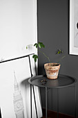 Houseplant on charcoal-grey side table