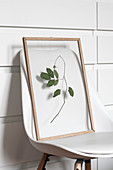 Dried leaves and picture frame on white chair