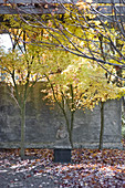 Buddha statue in front of concrete wall in autumnal garden