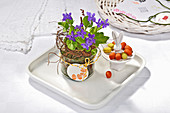 Violets in glass jar with tag next to sweets in china Easter bunny dish