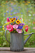 A colorful bouquet of summer flowers in a zinc watering can