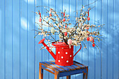 Easter eggs hung from white-flowering branches in red watering can against blue wall