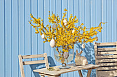 Vase of forsythia decorated with Easter eggs in crocheted covers against blue board wall