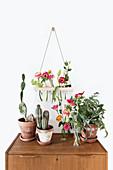 Summer flowers in DIY wall-mounted vases
