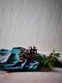 Koniferenzweig und trockene Kiefernzapfen vor grauer Wand