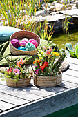 Arrangements of knotweed, snapdragons and zinnias in baskets on jetty