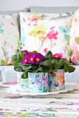 Primulas in handmade cache pots