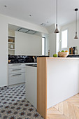 Modern open-plan kitchen with pale grey fitted cabinets