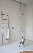 Ladder used as towel rack next to walk-in shower with glass screen