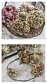 Kranz aus Hortensienblüten basteln