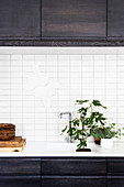 Natural decorations in white niche in black fitted kitchen