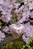 Heart-shaped bauble hung from branch of ornamental cherry