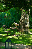 Ornate metal garden furniture in romantic seating area under tree in garden