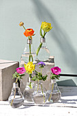 Colourful spring flowers in light-bulb vases