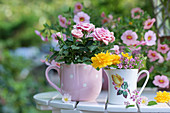 Small potted roses and mini-bouquet of kerrie and Meadowsweets in mugs