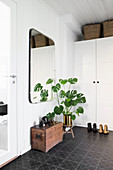 Wooden trunk and Swiss cheese plant in hallway with black tiled floor