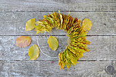 Half-finished wreath made of beech leaves