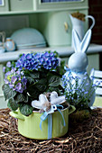 Hydrangea in old enamel saucepan decorated as gift with hand-sewn fabric hearts and ribbon