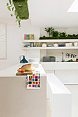 Counter below arrangement of artificial grass in white kitchen