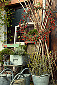 Autumn arrangement with wreath of rose hips, zinc watering cans and zinc buckets with branches