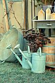 Still-life arrangement of zinc watering cans, zinc tub and and dried sedum