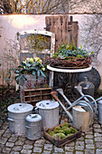 Wintry arrangement of hellebores, vine wreath, zinc pots, zinc watering cans and crate of moss